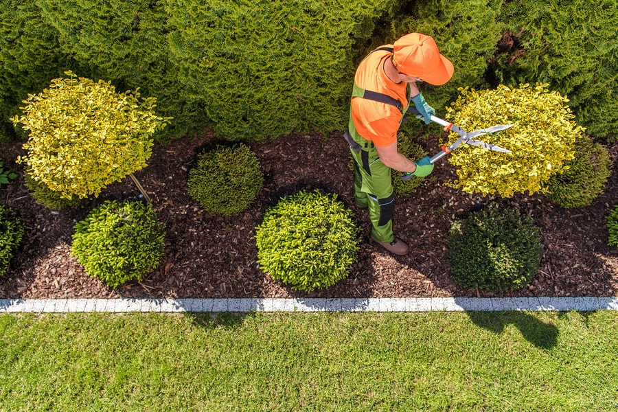 Landscaping Services For Residential And Commercial Properties