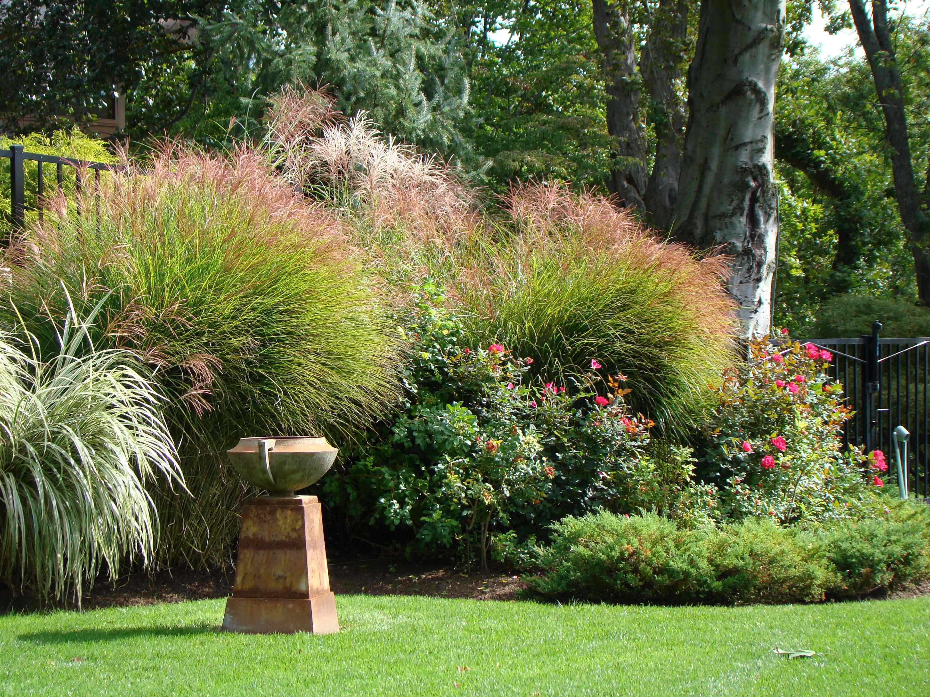 10 tips for rookie landscapers from a landscaping veteran