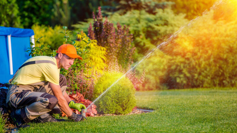 Nature's Turf launches pest control division