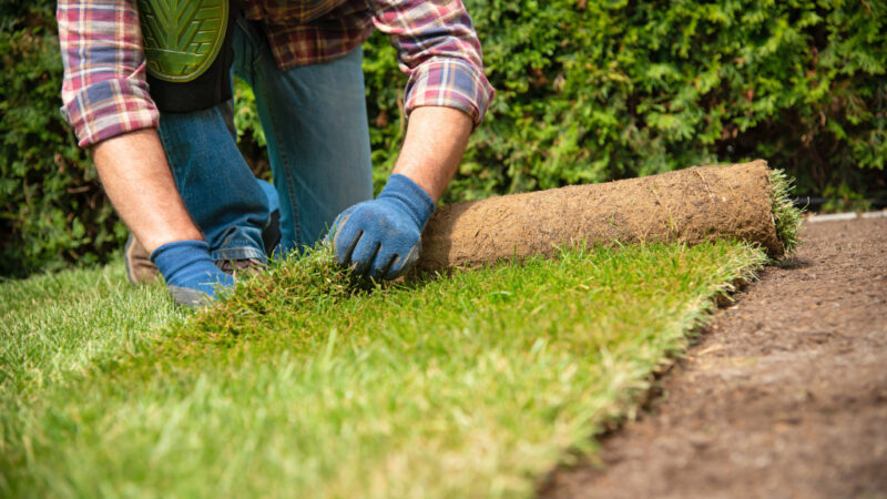 Got water? Landscaper finds profitability with fee-for-service watering