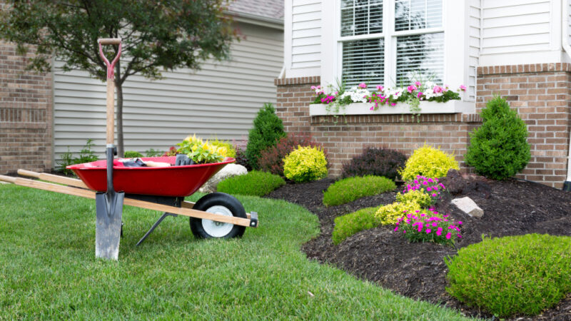 Fall lawn care: Tips to follow, mistakes to avoid